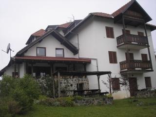 Dvosobni apartman, Zlatibor, Rujno