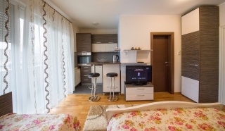 Studio apartment, Novi Sad, Lukijana Mušickog