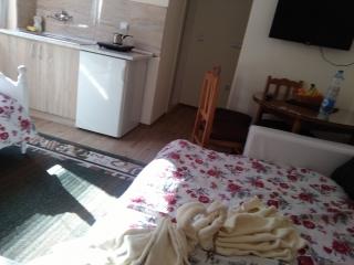 Studio apartman, Zlatibor, Mijaila Radovica