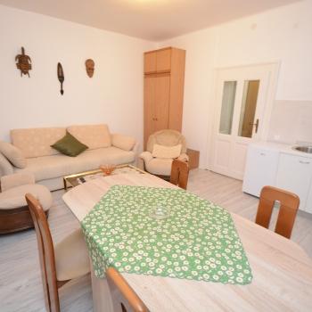 1.5 Room apartment, Belgrade, Knicaninova