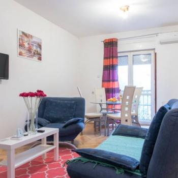 Jednoiposobni apartman, Novi Sad, Branimira Cosica