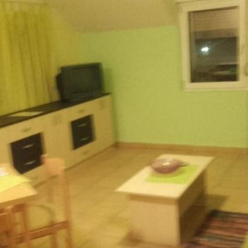1.5 Room apartment, Novi Sad, Kamenjar1/95