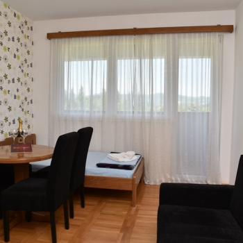 Jednosobni apartman, Banja Koviljača, Zdravka Mašanovića
